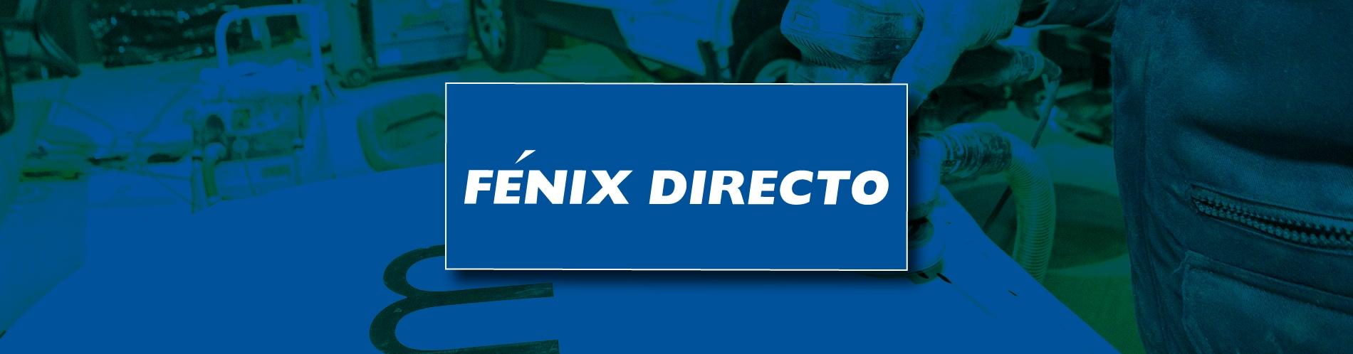 Talleres de chapa y pintura FENIX DIRECTO - Palma de Mallorca